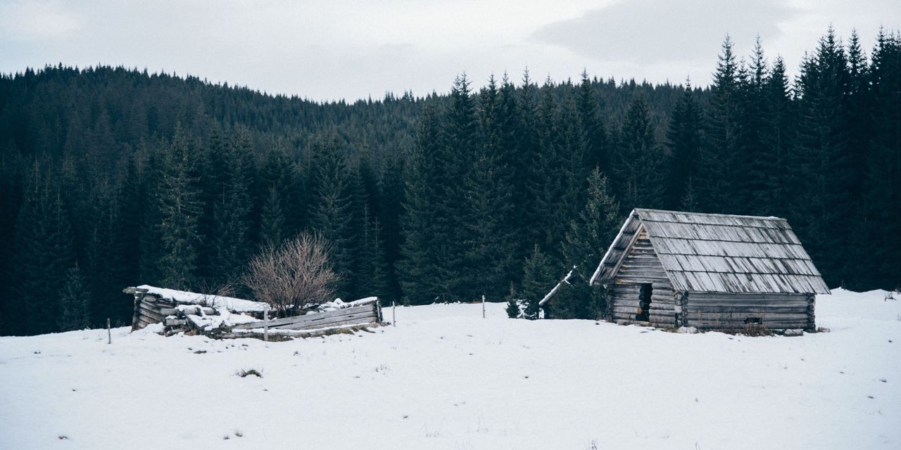 snow storms stories